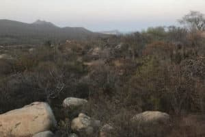 Lot 11 Lagunas Hill - Laguna Hills - San Jose del Cabo