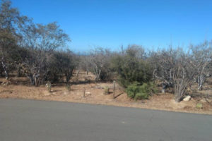 Lot 5 El Camino Real - Mision Buenavista - East Cape North
