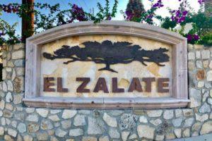 El Zalate - El Zalate - San Jose Del Cabo