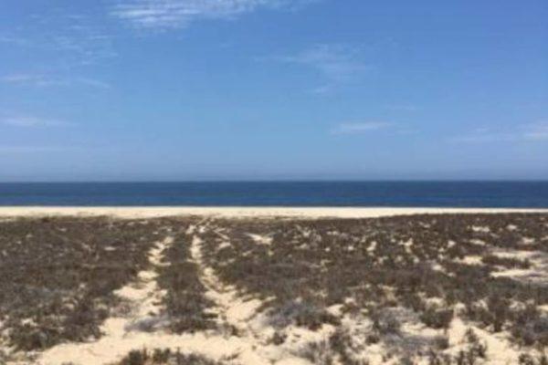 Lot 40 - Agua Blanca Beach Front  - Todos Santos
